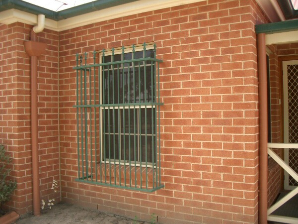 Front window security bars